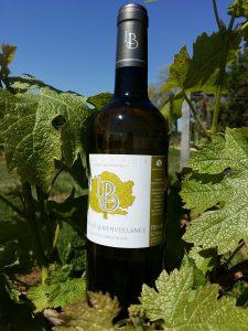 vin-naturel-clairet