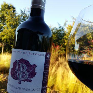 Quelles sont les bonnes conditions pour la dégustation de vin ?
